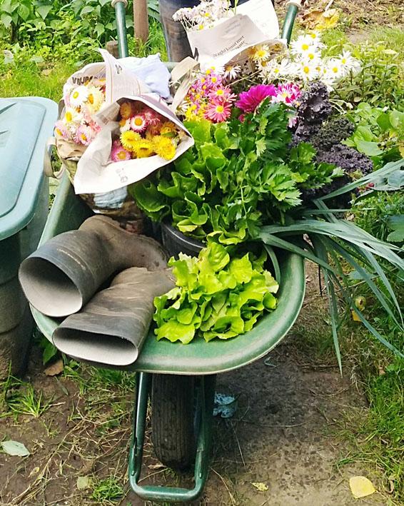 Cursus: 'De Natuurlijke & Eetbare Tuin'