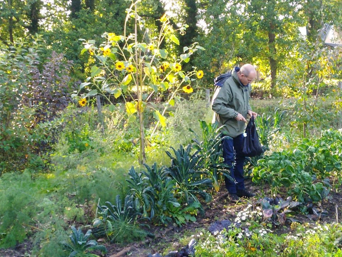 Oktober – surprises in de tuin